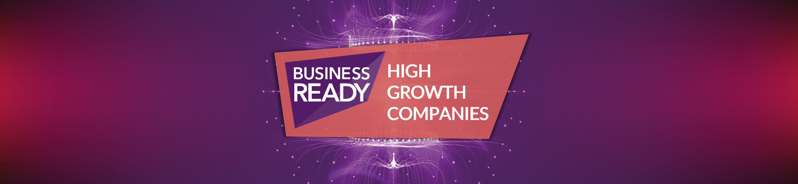 In Search of High Growth Companies